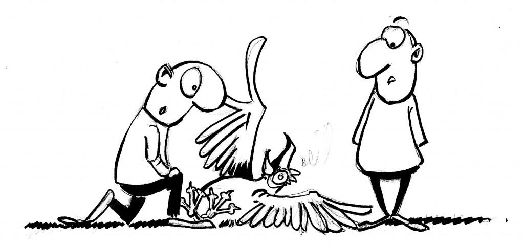 Actu 2015-12-10 - Grippe Aviaire
